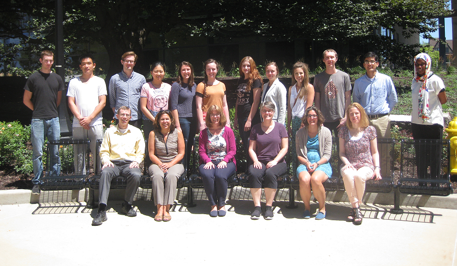2015 UI NNI REU Participants with Mentors